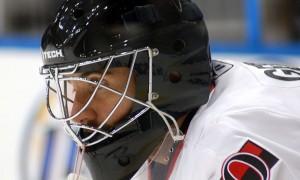 Хоккейный шлем: особенности, разновидности, как выбрать
