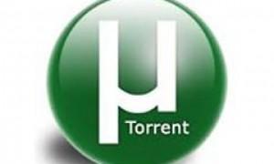 Торрент-трекеры знакомы всем
